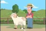 Người xén lông cừu