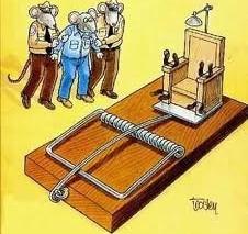 Cái bẫy chuột
