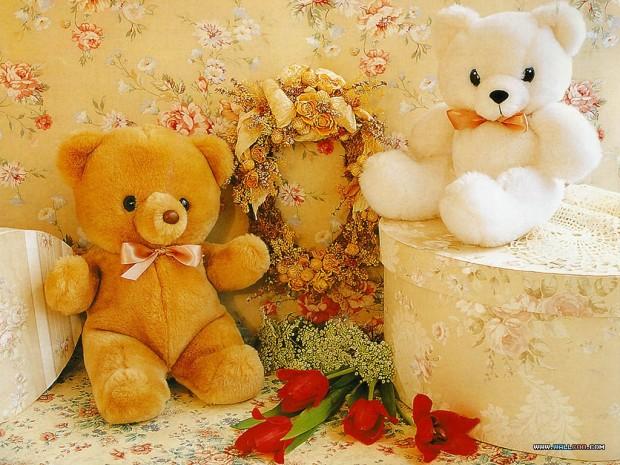 pa_Teddy_06