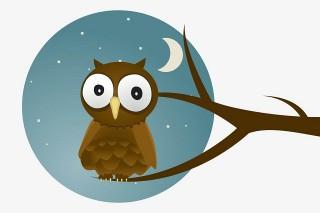 Truyện cổ tích song ngữ: The owl (Con cú)