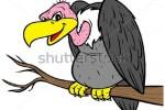 Sự tích chim Kền Kền