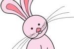Thỏ và Nhền Nhện