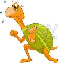 Rùa và vịt