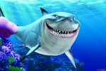 Sự tích con cá mập
