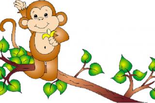 Khỉ và châu chấu